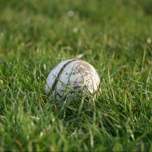 Well loved sliotar in the grass